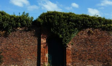 bricks-wall-garden-door